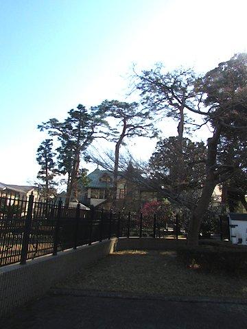 2016 yuzo0