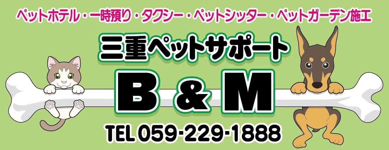 bm01.jpg