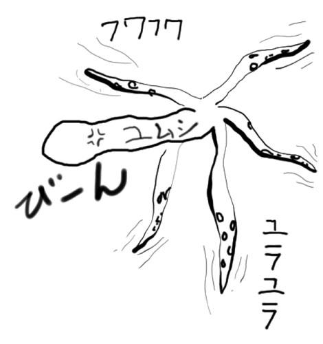 20160420019.jpg