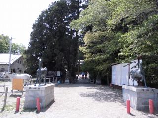 2015年05月06日 相馬中村城09