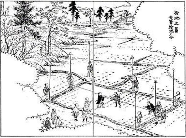 太閤検地(たいこうけんち)
