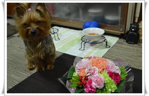 お嫁ちゃんからDSC_0194-20160509