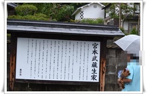 るきの運動会DSC_0410-20160605
