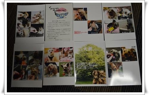 家にてDSC_0661-20160722