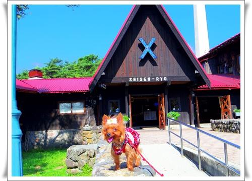 夏のお出かけIMGP4647-20160806