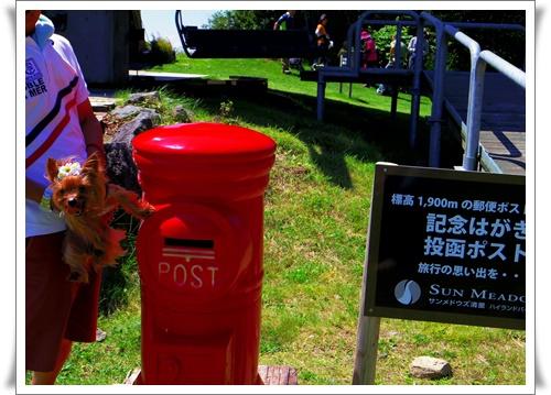 夏のお出かけIMGP4664-20160806