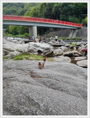 香嵐渓IMG00521_HDR-20160828