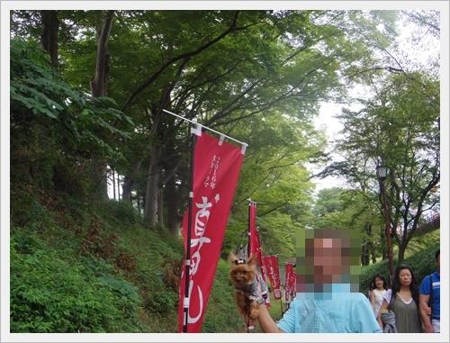 上田城IMGP4764-20160918