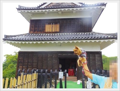 上田城IMGP4772-20160918