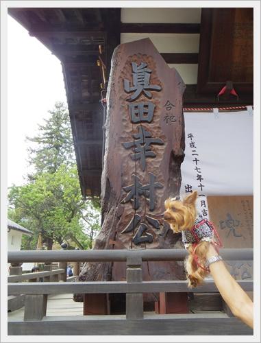 上田城IMGP4773-20160918