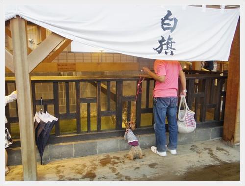 草津よいとこIMGP4786-20120101