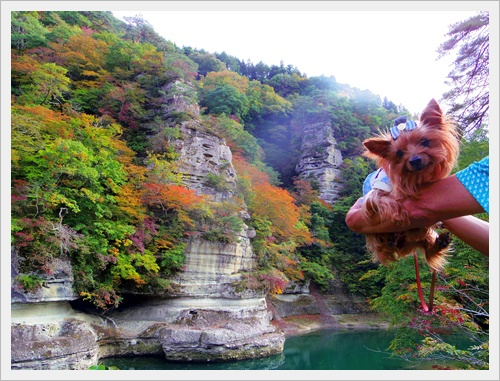 東北旅行IMGP4890-20120101