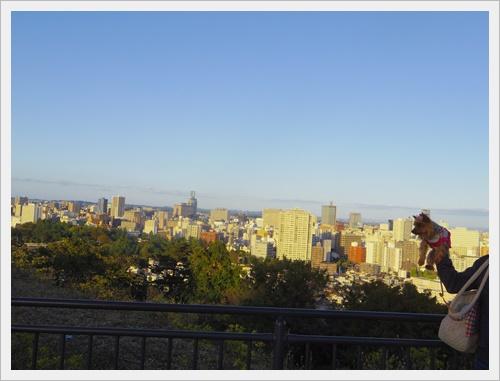 東北旅行IMGP4984-20120102