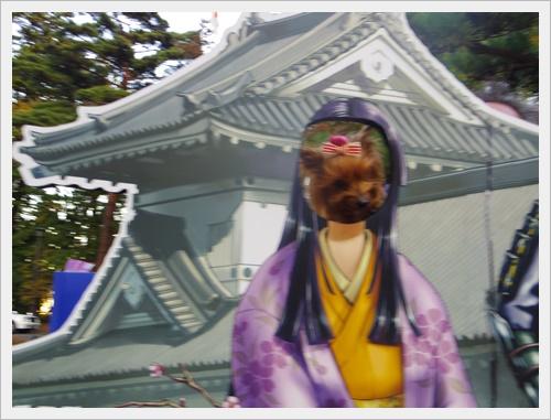 東北旅行IMGP4987-20120102