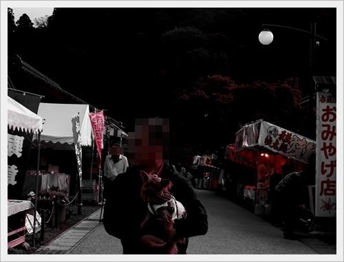 香嵐渓IMGP5038-20120113