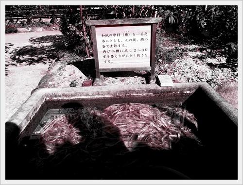 香嵐渓IMGP5063-20120101