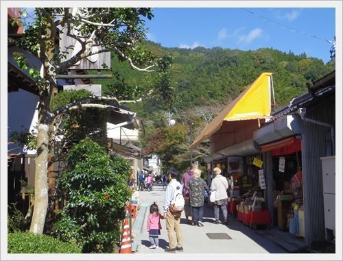 香嵐渓IMGP5105-20120101
