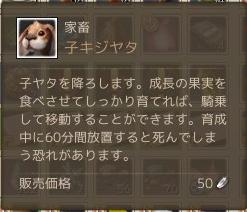 4月22日子キジヤタ