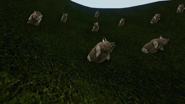 10月11日果樹園の豚さん