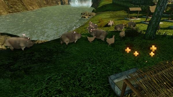 10月19日豚とニワトリ