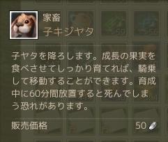 10月27日子キジヤタ