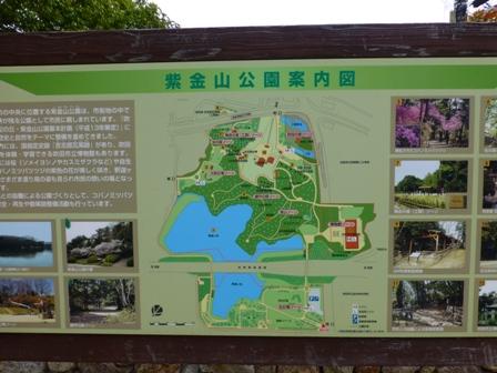 紫金山公園6