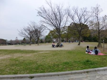 紫金山公園7
