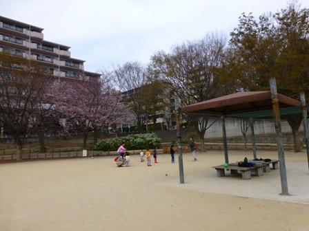 紫金山公園9