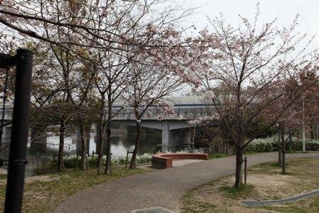 紫金山公園14