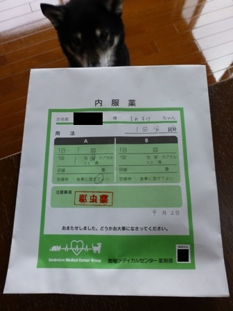 2016狂犬病9