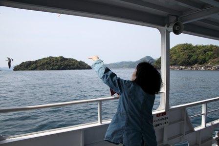 伊根湾めぐり遊覧船32