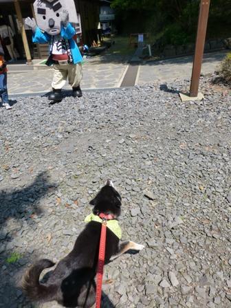玄武洞公園8