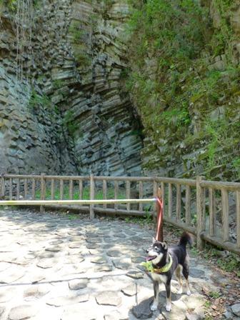 玄武洞公園45