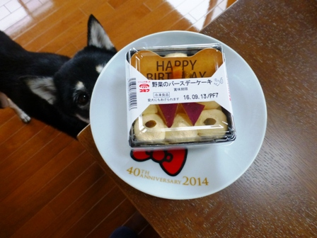 野菜のバースデーケーキ8