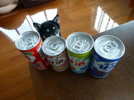 森永甘酒2