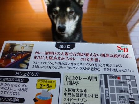 大阪あまからビーフカレー2