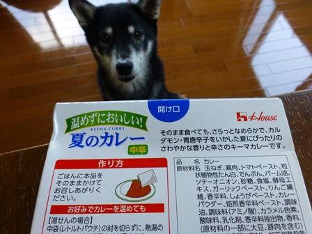 温めずにおいしい夏のカレー (2)