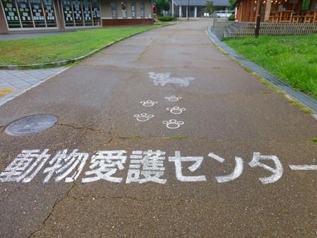 うだ・アニマルパーク11