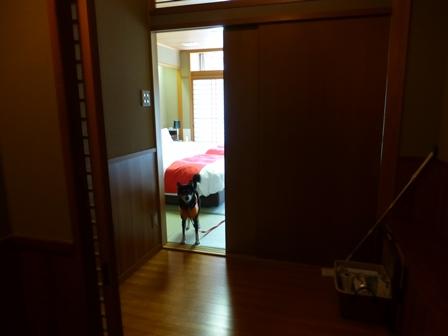 スメールお部屋8