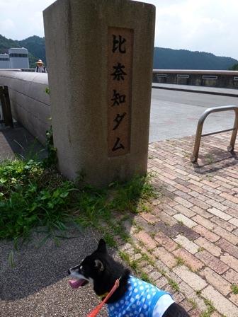 登力展望公園23