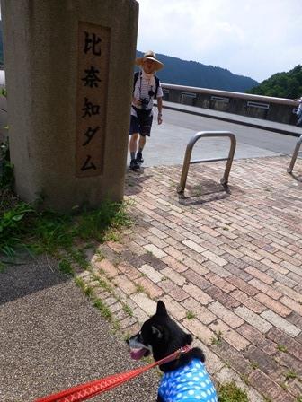 登力展望公園24