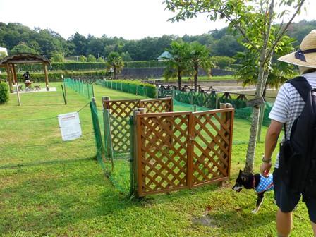 青山ガーデンリゾート8