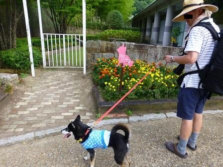 青山ガーデンリゾート18