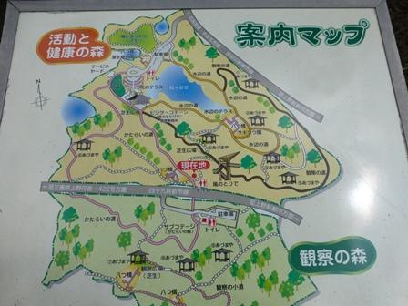 三重県上野森林公園3