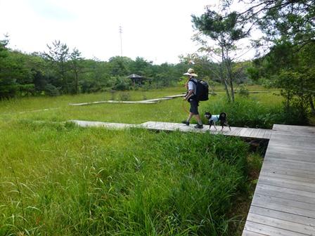 三重県上野森林公園12