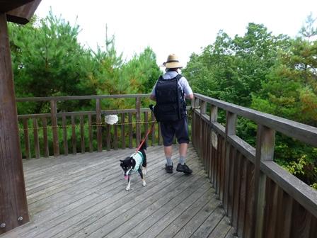 三重県上野森林公園27