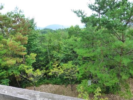 三重県上野森林公園29