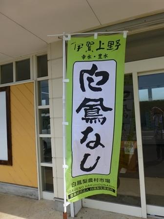 白鳳梨生産組合直売所3