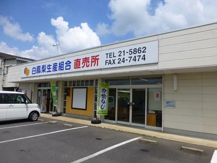 白鳳梨生産組合直売所4