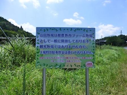山田牧場5